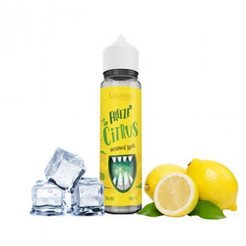 Freeze Citrus 50ml 0mg x4